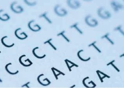Fælles DNA-sekvenser