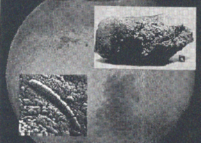 Liv på Mars – fantasi og forskning