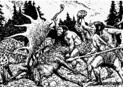 Hvad med neandertalerne?