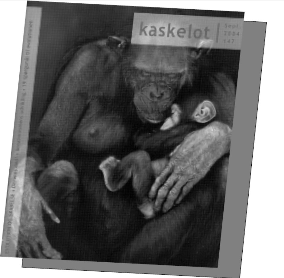 En gang høvl til creationister II