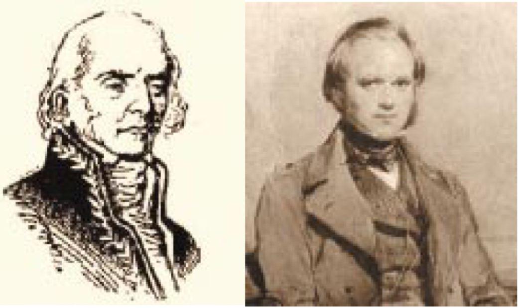 Darwin – Den gode lamarckist