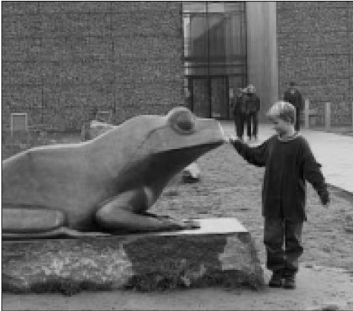 NaturBornholm – oplevelse og ideologi