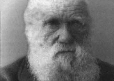 Nutidens populære billede af Darwin