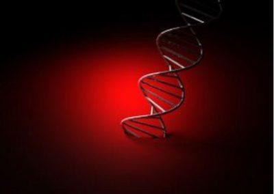 Mutationer er 100% tilfældige, eller er de?