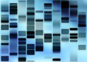 """Hvilken informasjon får vi fra """"Genetisk tomgods""""?"""